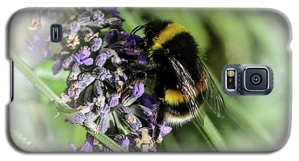 Dreamy Bumble Bee Galaxy S5 Case
