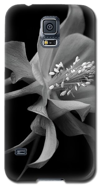 Dreamy Columbine Galaxy S5 Case