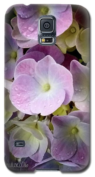 Galaxy S5 Case featuring the photograph Dreamy Hydrangea by Mimulux patricia no No