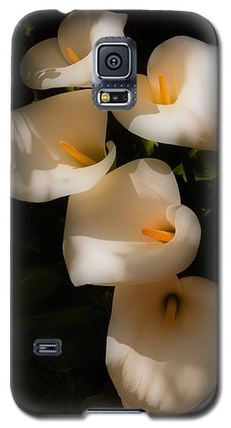 Dreamy Lilies Galaxy S5 Case by Mick Burkey