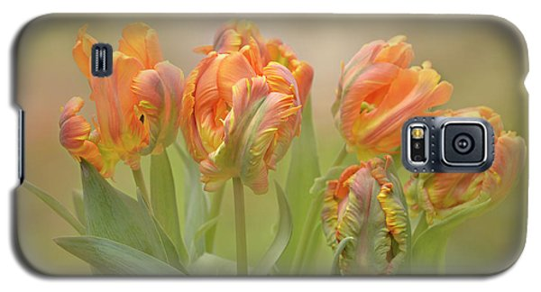 Galaxy S5 Case featuring the photograph Dreamy Parrot Tulips by Ann Bridges