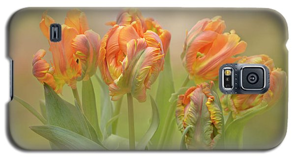 Dreamy Parrot Tulips Galaxy S5 Case