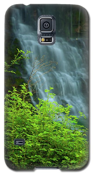 Dreamy Waterfalls Galaxy S5 Case by Iris Greenwell