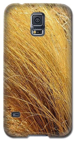 Dried Grass Galaxy S5 Case