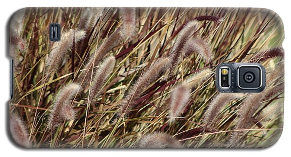 Dried Grasses In Burgundy And Toasted Wheat Galaxy S5 Case