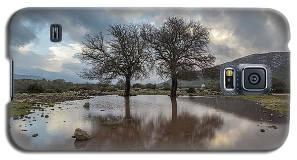 Dried Tree Reflected Galaxy S5 Case