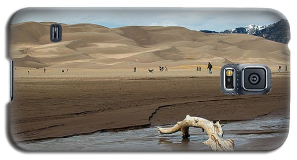 Drift Wood And Dunes Galaxy S5 Case