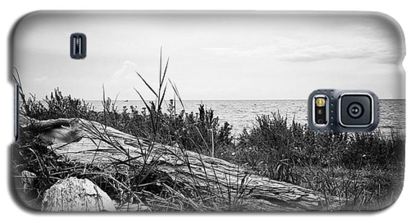 Galaxy S5 Case featuring the photograph Drift Wood by Karen Stahlros
