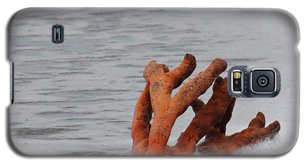 Drifting Coral Galaxy S5 Case