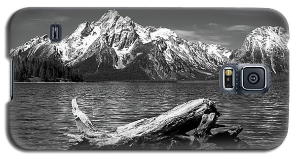 driftwood and Mt. Moran Galaxy S5 Case