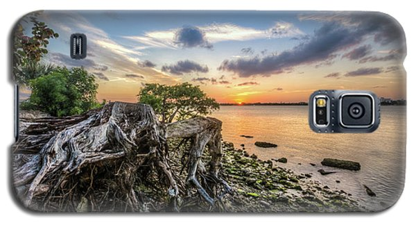 Galaxy S5 Case featuring the photograph Driftwood At The Edge by Debra and Dave Vanderlaan