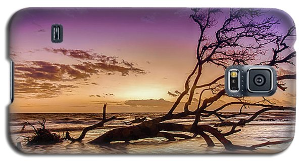 Driftwood Beach 2 Galaxy S5 Case