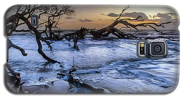 Driftwood Beach 3 Galaxy S5 Case