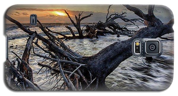 Driftwood Beach 4 Galaxy S5 Case
