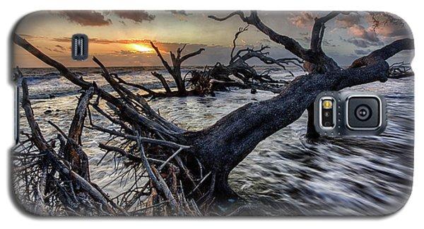 Driftwood Beach 5 Galaxy S5 Case