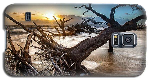 Driftwood Beach 7 Galaxy S5 Case