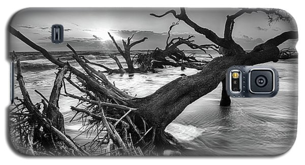 Driftwood Beach 8 Galaxy S5 Case