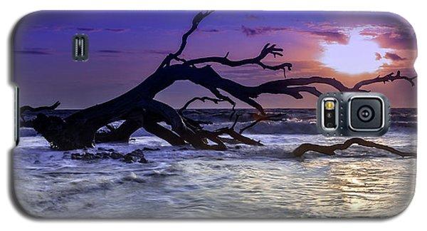 Driftwood Beach 9 Galaxy S5 Case