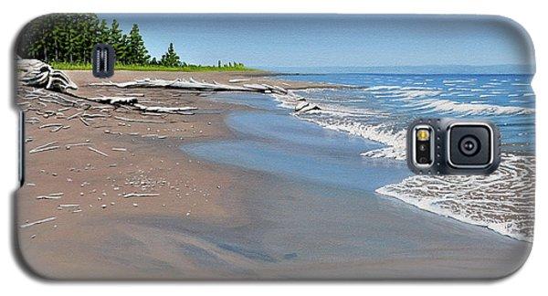 Driftwood Beach Galaxy S5 Case