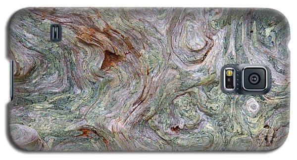 Driftwood Burl Galaxy S5 Case by Chuck Flewelling