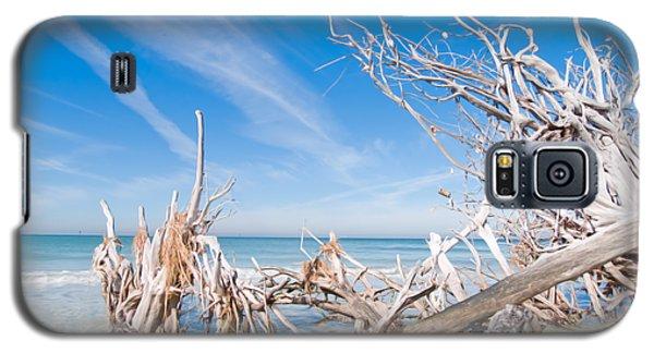 Driftwood C141348 Galaxy S5 Case