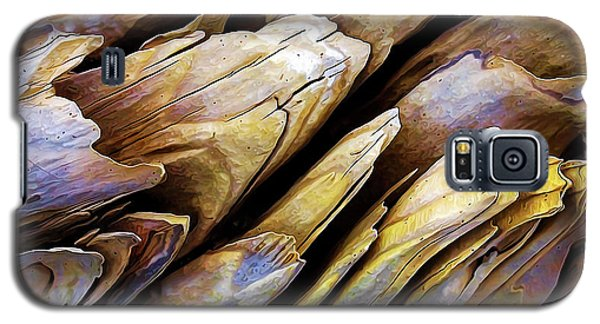 Driftwood Edges Galaxy S5 Case