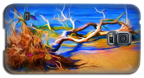 Driftwood Galaxy S5 Case by Ludwig Keck