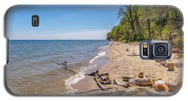 Driftwood On The Beach Galaxy S5 Case
