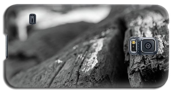Driftwood Galaxy S5 Case