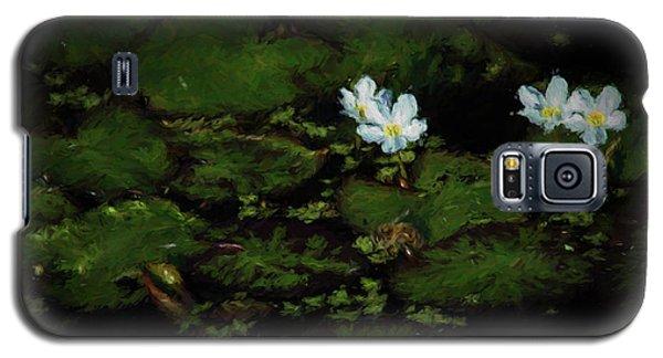 Drinking Bee 2 Galaxy S5 Case by Travis Burgess