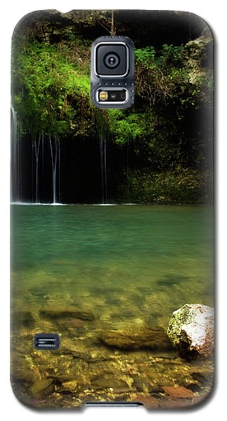 Dripping Springs Galaxy S5 Case