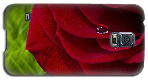 Drop On A Rose Galaxy S5 Case