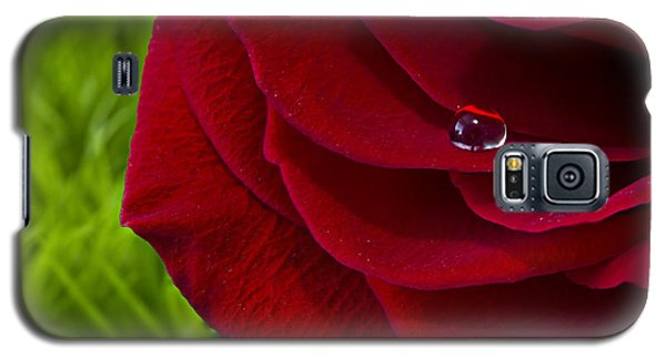 Drop On A Rose Galaxy S5 Case