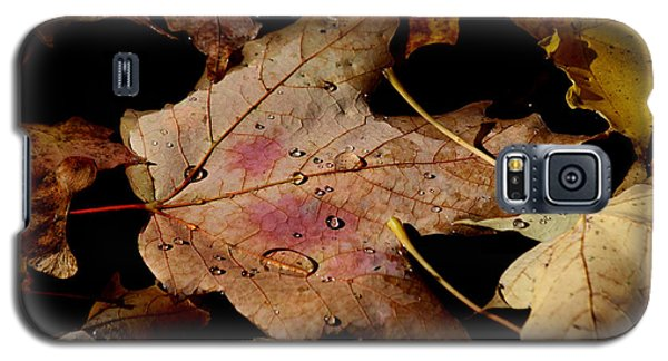 Galaxy S5 Case featuring the photograph Droplets On Fallen Leaves by Doris Potter
