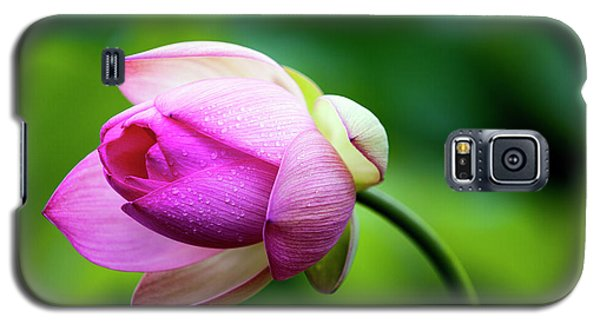 Galaxy S5 Case featuring the photograph Droplets On Lotus by Edward Kreis