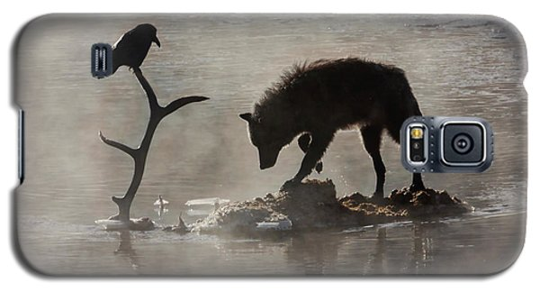 Druid Wolf And Raven Silhouette Galaxy S5 Case