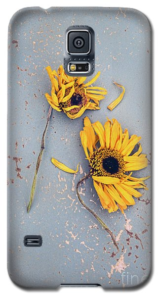 Galaxy S5 Case featuring the photograph Dry Sunflowers On Blue by Jill Battaglia