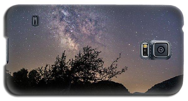 Dry Tree Under The Stars Galaxy S5 Case