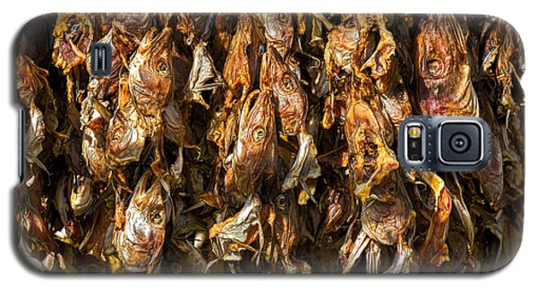 Drying Fish Heads - Iceland Galaxy S5 Case