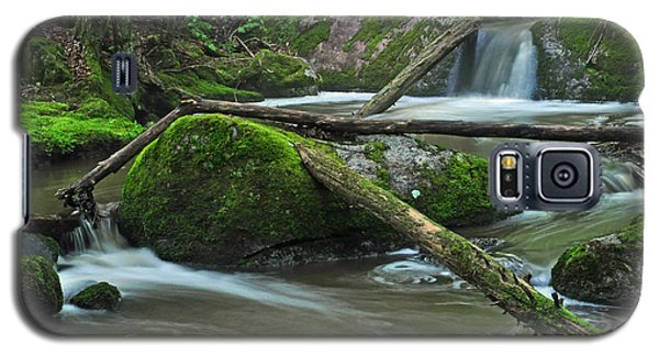 Dual Falls Galaxy S5 Case
