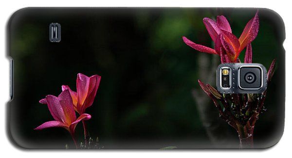 Dual Red Plumerias Galaxy S5 Case