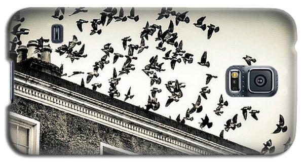 Flight Over Oscar Wilde's Hood, Dublin Galaxy S5 Case