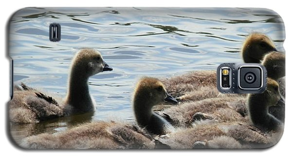 Duck Babies On The Water Galaxy S5 Case