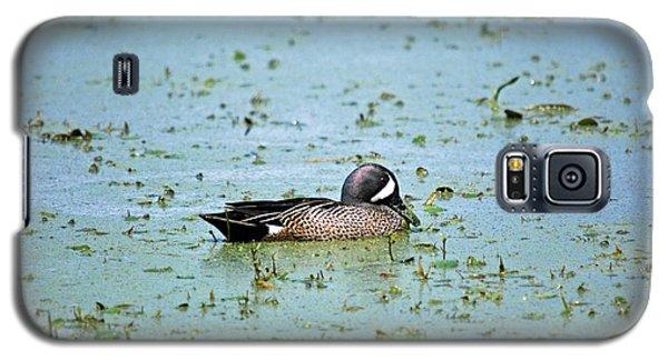 Galaxy S5 Case featuring the photograph Duck Bluegreen by Teresa Blanton