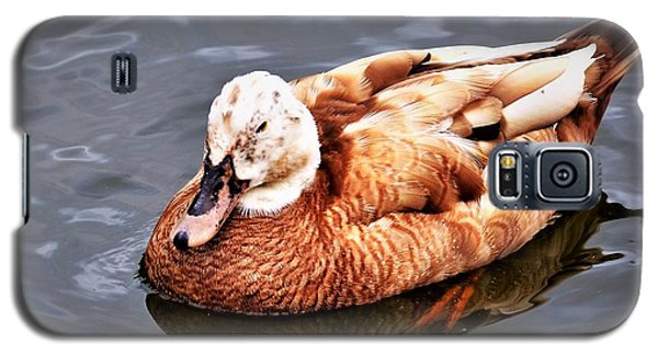 Duck Galaxy S5 Case