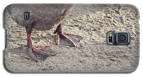 Galaxy S5 Case featuring the photograph Duck Feet In The Sand by Cindy Garber Iverson