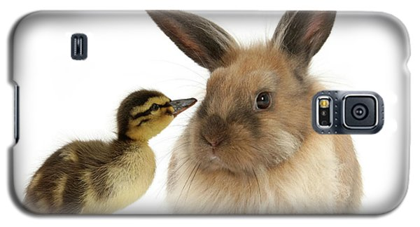 Duck Out Bunny Galaxy S5 Case