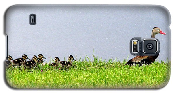 Duck Walk Galaxy S5 Case