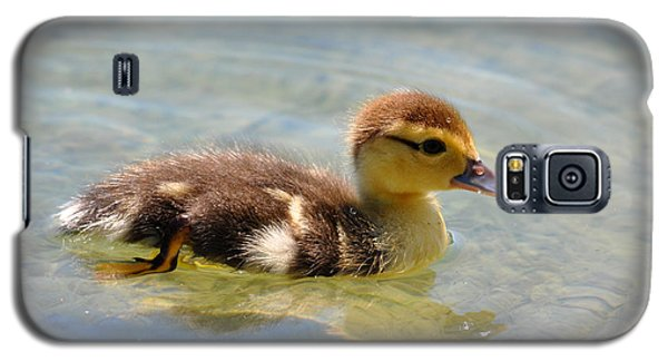 Duckling 7 Galaxy S5 Case