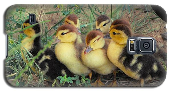 Ducklings Galaxy S5 Case